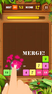 Drag n Merge Block Puzzle