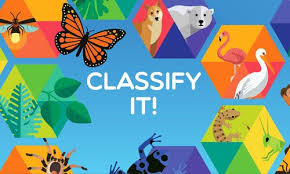 Classify It!